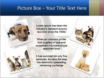 0000081802 PowerPoint Templates - Slide 24