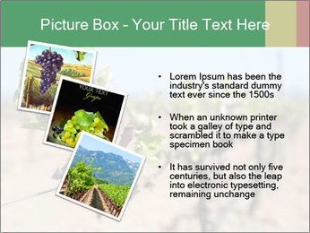 0000081803 PowerPoint Templates - Slide 17
