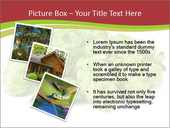 0000081808 PowerPoint Templates - Slide 17