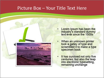 0000081808 PowerPoint Templates - Slide 20