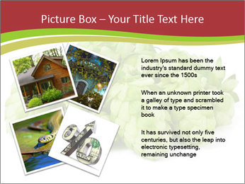 0000081808 PowerPoint Templates - Slide 23