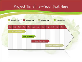 0000081808 PowerPoint Templates - Slide 25