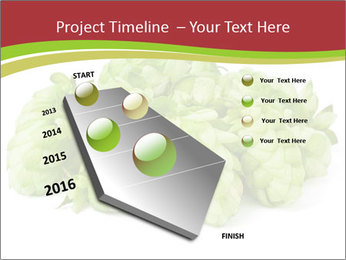 0000081808 PowerPoint Templates - Slide 26