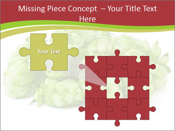 0000081808 PowerPoint Template - Slide 45