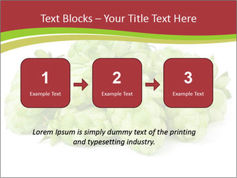 0000081808 PowerPoint Templates - Slide 71