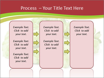 0000081808 PowerPoint Templates - Slide 86