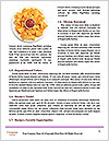 0000081812 Word Templates - Page 4