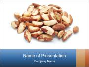 0000081816 PowerPoint Templates