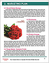 0000081819 Word Templates - Page 8