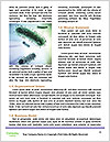 0000081823 Word Templates - Page 4