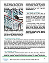 0000081829 Word Template - Page 4