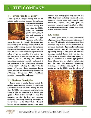 0000081843 Word Template - Page 3