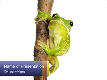 0000081845 PowerPoint Templates - Slide 1