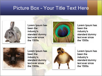 0000081845 PowerPoint Templates - Slide 14