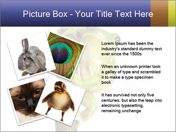 0000081845 PowerPoint Templates - Slide 23