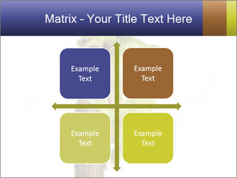 0000081845 PowerPoint Templates - Slide 37