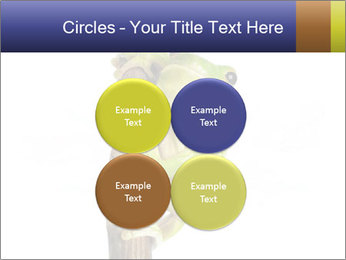 0000081845 PowerPoint Templates - Slide 38