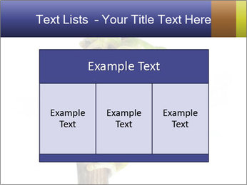 0000081845 PowerPoint Templates - Slide 59