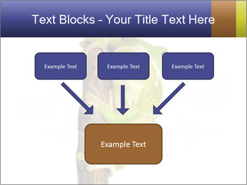 0000081845 PowerPoint Templates - Slide 70