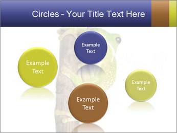 0000081845 PowerPoint Templates - Slide 77