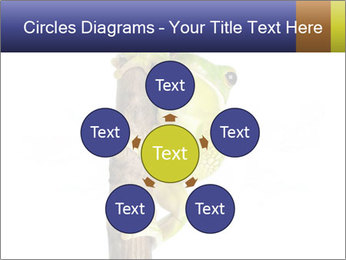 0000081845 PowerPoint Templates - Slide 78