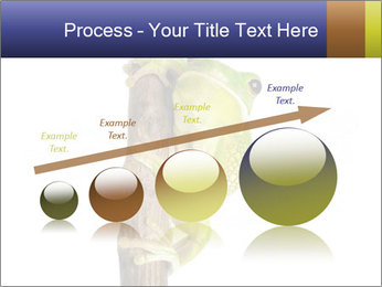 0000081845 PowerPoint Templates - Slide 87