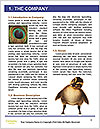 0000081845 Word Template - Page 3