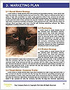 0000081845 Word Template - Page 8