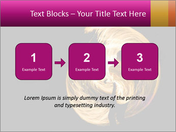 0000081846 PowerPoint Templates - Slide 71