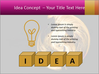 0000081846 PowerPoint Template - Slide 80