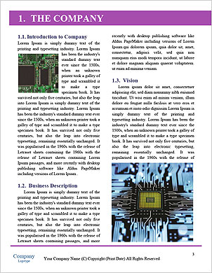 0000081848 Word Template - Page 3
