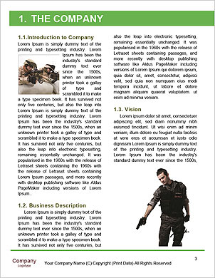 0000081855 Word Template - Page 3