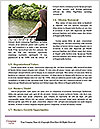 0000081858 Word Templates - Page 4