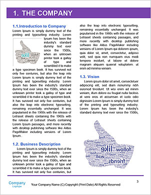 0000081861 Word Template - Page 3