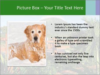 0000081866 PowerPoint Template - Slide 13