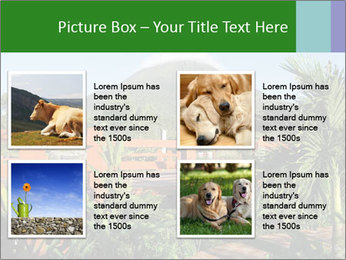 0000081866 PowerPoint Template - Slide 14