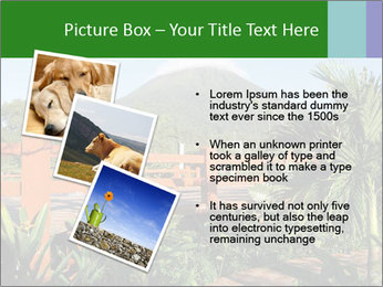 0000081866 PowerPoint Templates - Slide 17