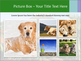 0000081866 PowerPoint Template - Slide 19