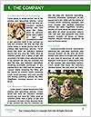 0000081866 Word Template - Page 3
