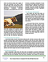 0000081866 Word Template - Page 4