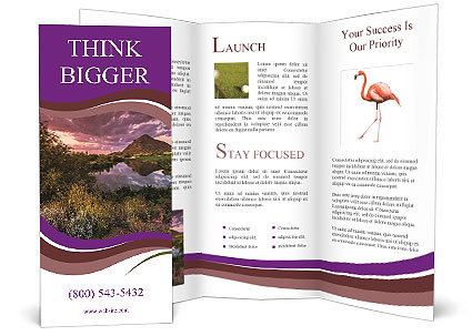 0000081869 Brochure Template