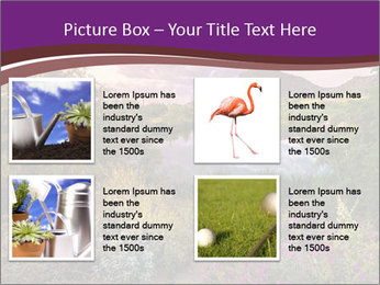 0000081869 PowerPoint Template - Slide 14