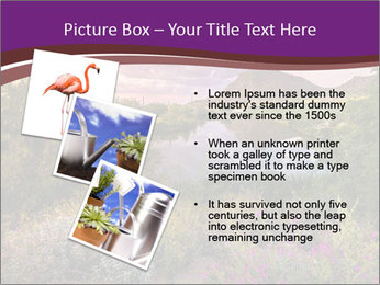 0000081869 PowerPoint Template - Slide 17