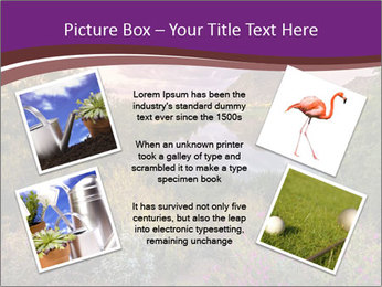 0000081869 PowerPoint Template - Slide 24