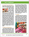 0000081870 Word Template - Page 3