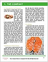 0000081882 Word Templates - Page 3