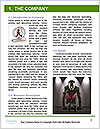 0000081887 Word Template - Page 3