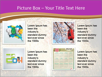 0000081889 PowerPoint Templates - Slide 14