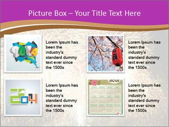 0000081889 PowerPoint Template - Slide 14