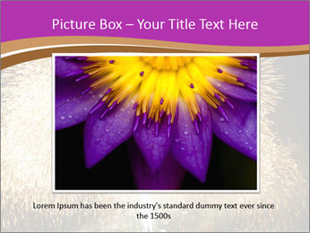 0000081889 PowerPoint Templates - Slide 16